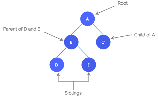 Root, Parent, Child, Siblings in a Tree